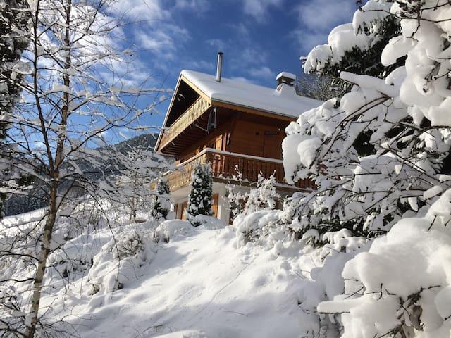 Comfortable alpine apartment - Saint-Jean-d'Aulps - Huoneisto