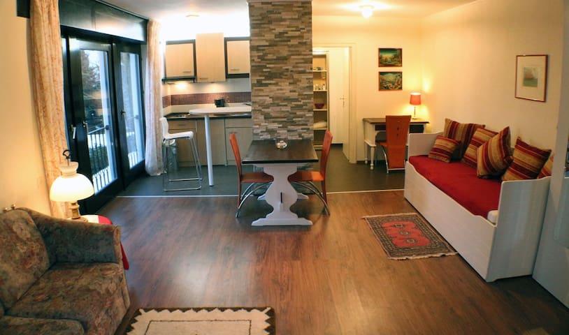 Apartment in Villa with Terrace - Bergisch Gladbach - Leilighet