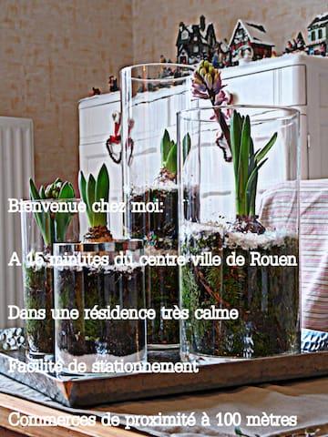 Grand appartement - Franqueville-Saint-Pierre - Appartement