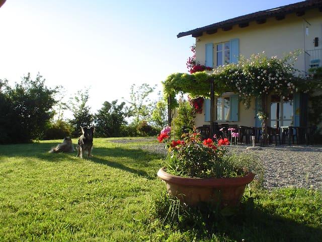 IL BRICCO - Hill, Vine & Truffle - Sciolze - Bed & Breakfast