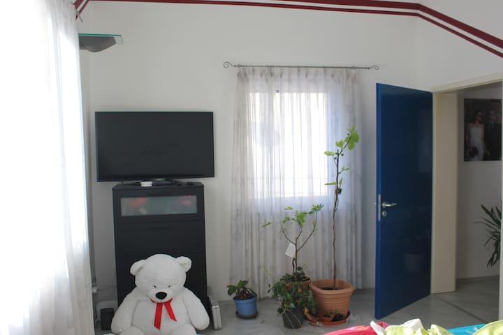 Schönes Zimmer in ruhiger Lage - Baltmannsweiler - Appartement