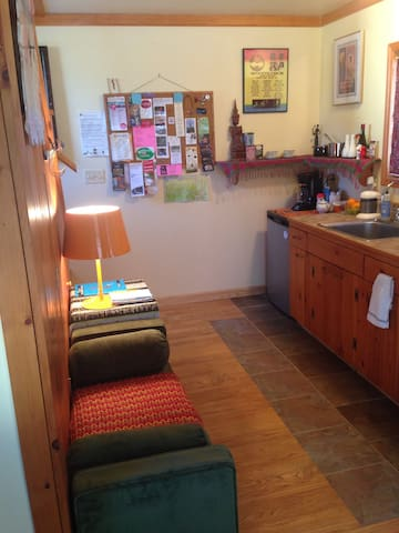 In Town Apartment! (No Cleaning Fee) - 伍德斯托克 - 公寓