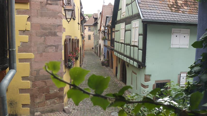 Honeymoon in Riquewihr, Alsace - Riquewihr - Hus