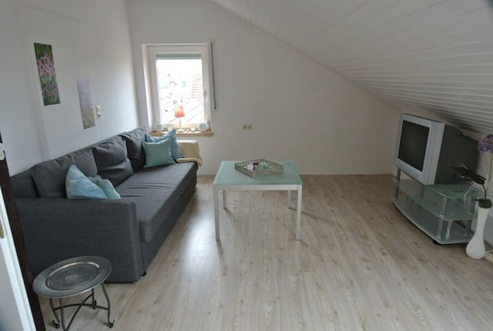 Charming apartment where three countries meet - Grenzach-Wyhlen - Lägenhet