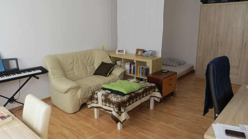 A couch in a cozy apartment - Munich - Leilighet