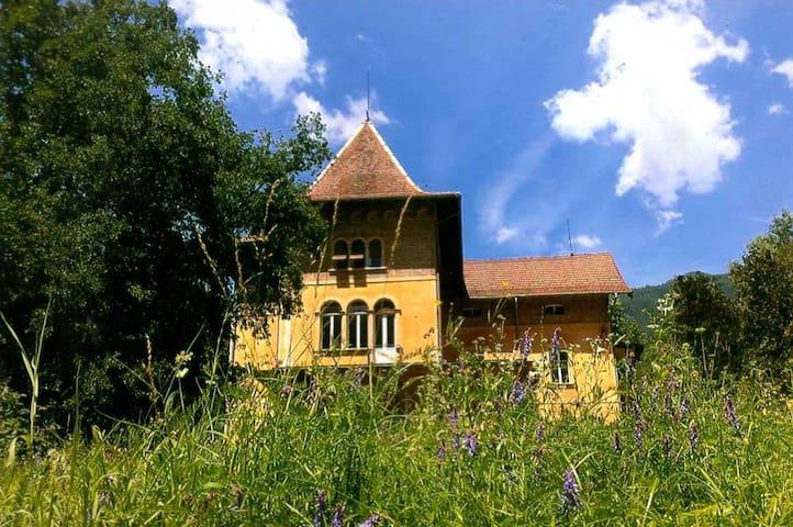 Large Historic Dolomites Villa - Roncegno - Villa