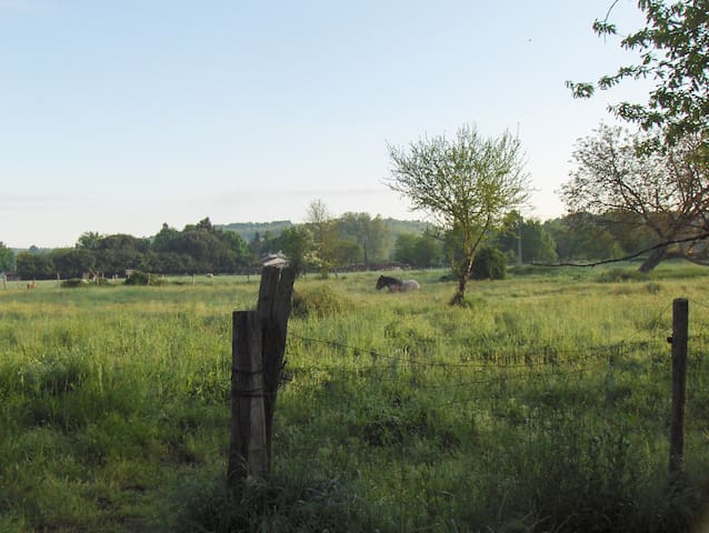 Hobbit house on a community farm - Chenaud - Jordhus