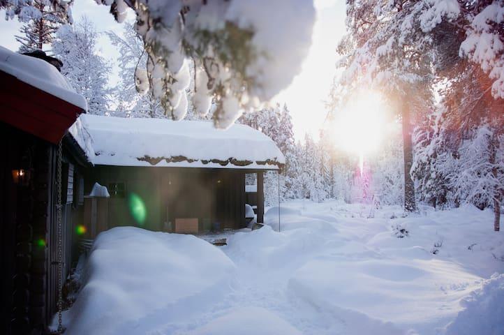 Rustic mountain cabin in Telemark - Tinn Austbygd - Kabin