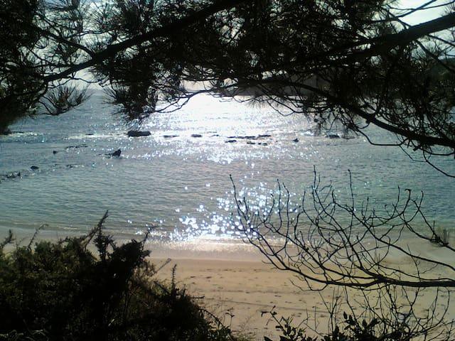 Tranquilidad  y vistas (illas Cies) - Cangas do Morrazo - Departamento