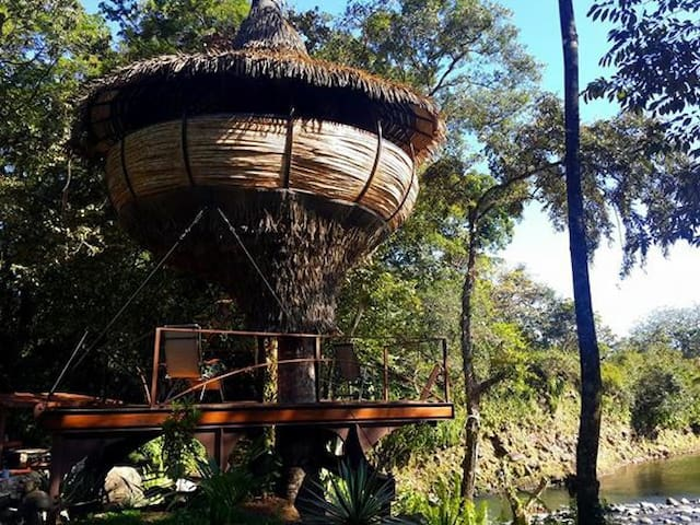 Tree-house Experience on a river - PA - Casa sull'albero