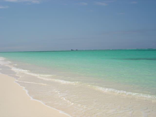 Beachfront 2 Bdrm Condo on Gorgeous Secluded Beach - Whitby - Condomínio