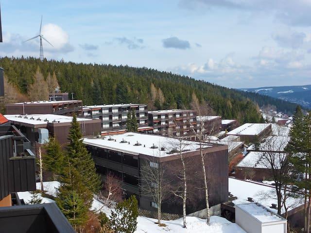 Spacious Apartment Terrassenpark 5456.4 - Schonach im Schwarzwald