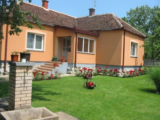 Vacation in Valjevo - Valjevo - Talo