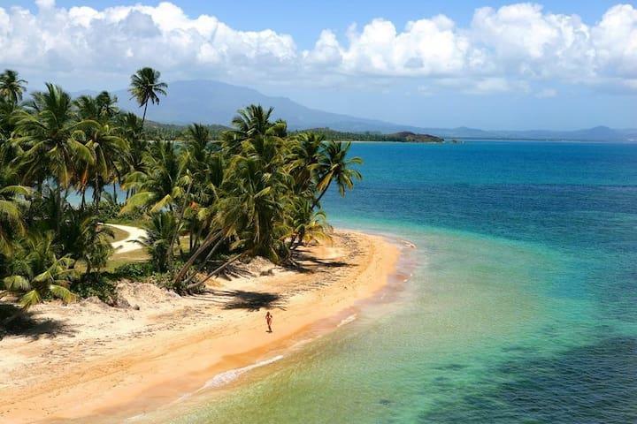 Palmas del Mar, 3 Bedrooms, 3 Bath - Humacao