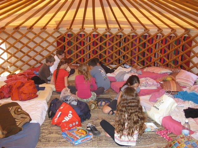 Cozy Mongolian Tent in Ramat golan - Giv'at Yo'av