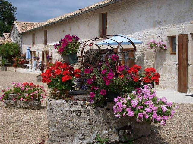 Pretty 3 gite complex in Poitou-Charentes - Sauzé-Vaussais - Haus