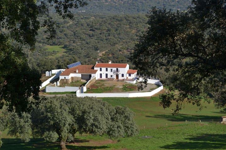 CORTIJO MIRACIELO - Arroyomolinos de León - Maison