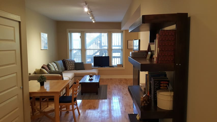 1 Bedroom in Lovely, Light Apartment! - St. Louis - Daire