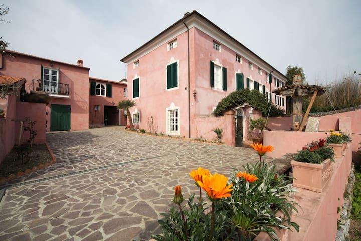 Le Donne Di Bargecchia - Gina, sleeps 4 guests - Corsanico - Leilighet