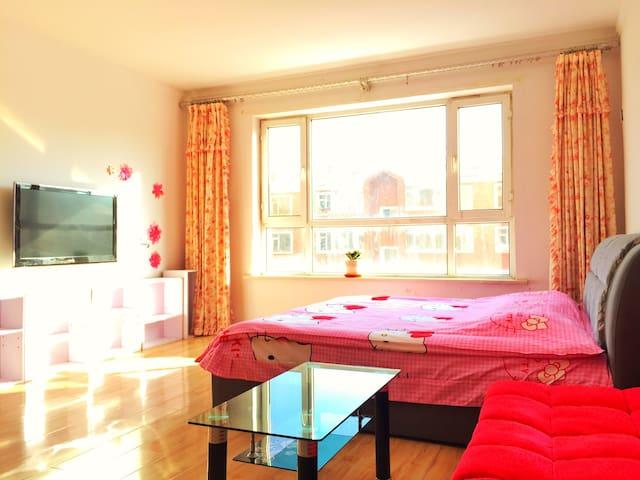 东方广场浪漫一居室 - 长春 - 公寓