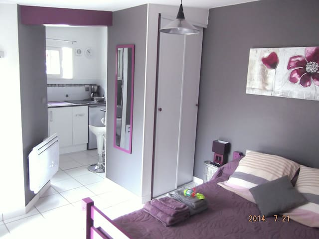 Tarbes Pyrénées Private Bedroom - Tarbes - Appartement