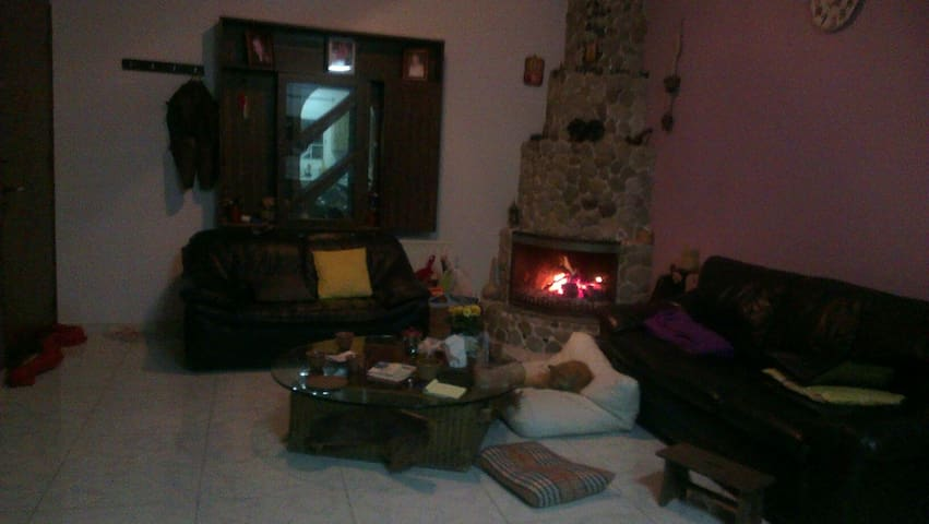 Privet room in a cozy central flat - Nicosia - Appartement