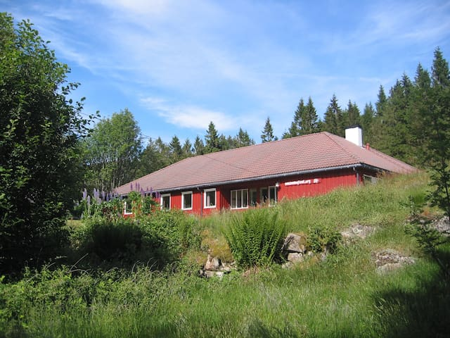 Huge holiday home in Nature for 32 - Helleland