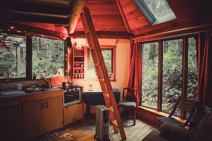 Rustic cabin in the woods - Galiano Island - Chatka