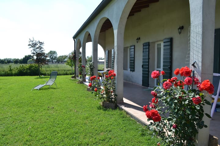 House 57 sqm with garden, patio, private parking - Guarda Veneta - Ev