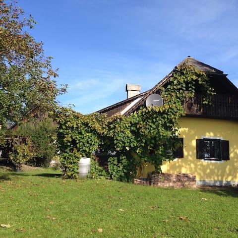 charming wineyard chalet  - Gauitsch 13