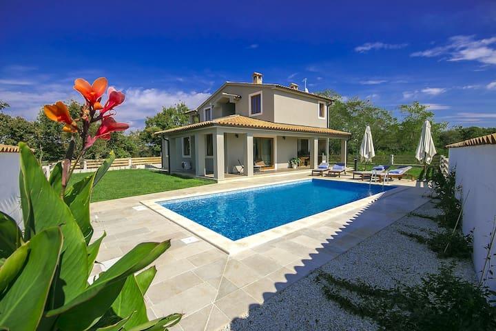 Brand new, designer Villa Mari with swimming pool - Svetvinčenat