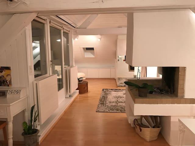 Cozy attic Loft - 10 min to HB - Zúrich - Loft