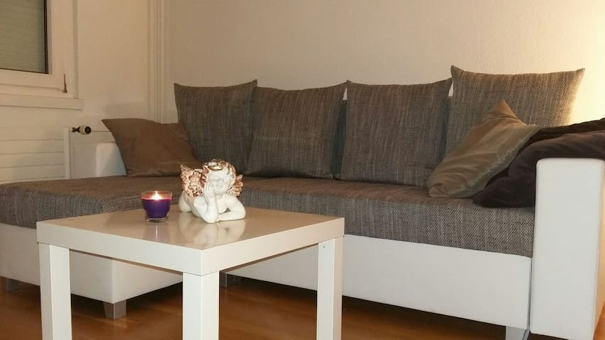 Room incl Sauna nearby lake/15 minutes from Zurich - Greifensee