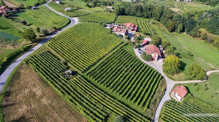 Tourist Farm Jakljevic, Metlika - Grabrovec - Leilighet