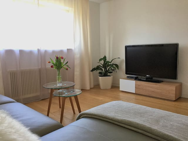 Charming apartment with private garden area - Hohenweiler - Appartement