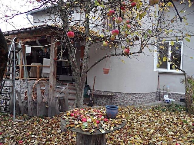 Домик у Озера - Mriya - Huis