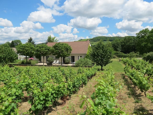 Two bedroom house in the vineyards near Santenay - Paris-l'Hôpital - Huis