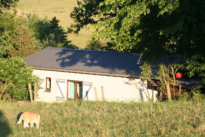 CHARMING HOUSE in ARDENNEN-HASTIERE - Hastiere - 一軒家