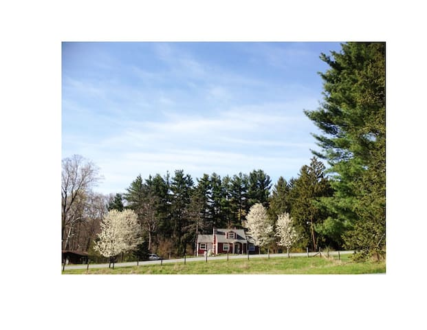 Jewel box on 1.2 acres - Wappingers Falls - Hus