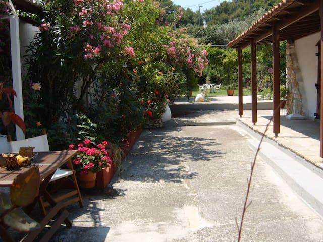 beach house with wonderful terraces - Achladias - Maison
