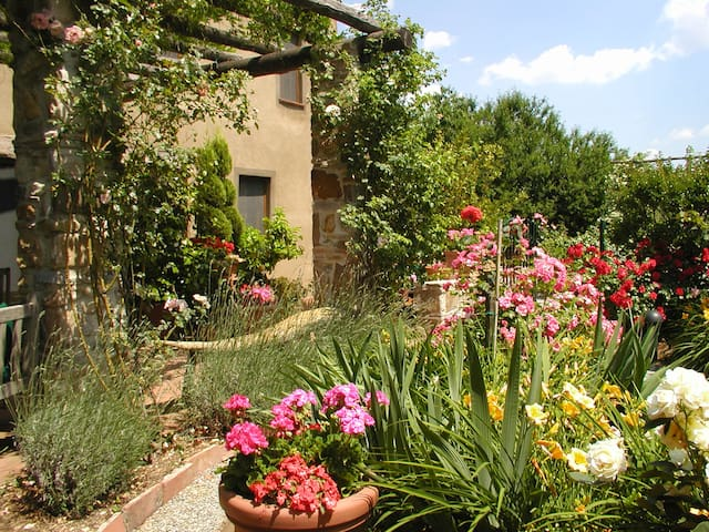 Il Rifugio B&B in the Olive Covered Hills of Lucca - Capannori - Bed & Breakfast