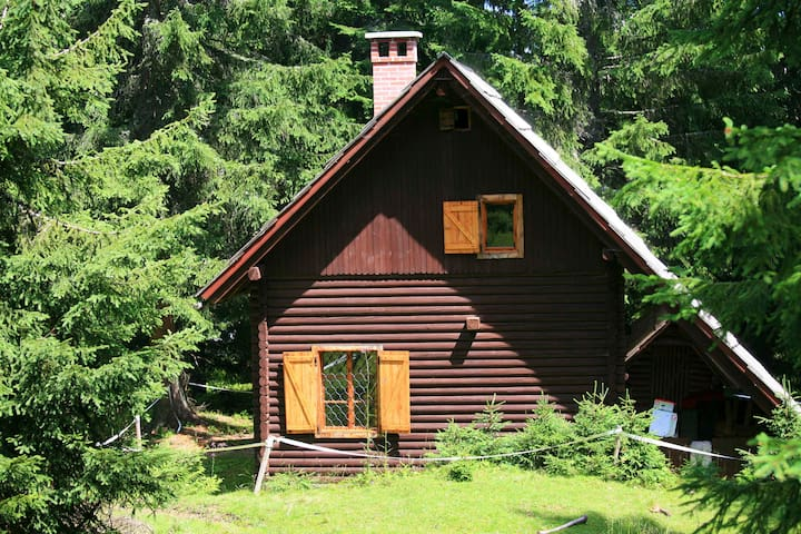 Remote Cabin in forest, above Bled - Goreljek - Bled,  - Cabaña