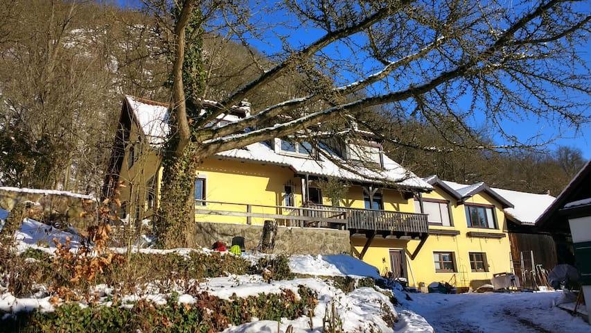 Wohnen an der Donau neben Walhalla - Donaustauf - Leilighet