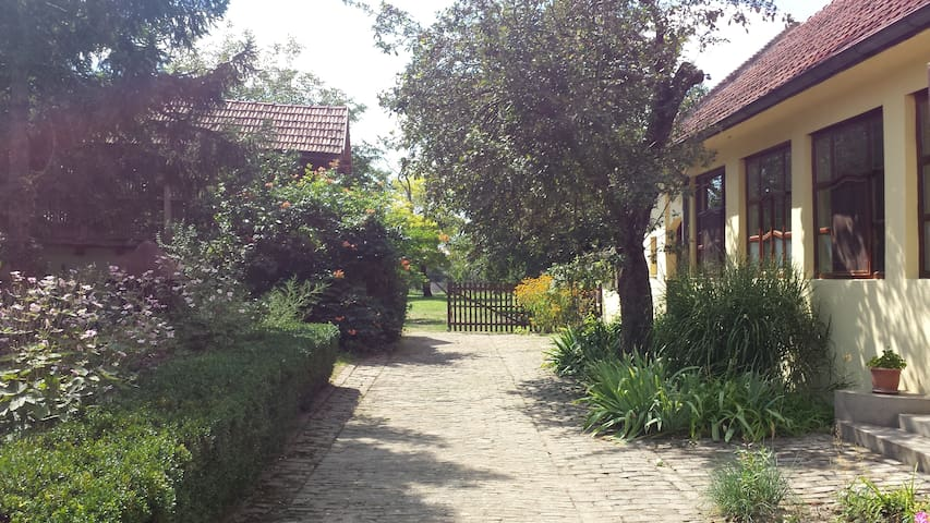 Serbian Village Farmhouse - Stara Moravica - Hus