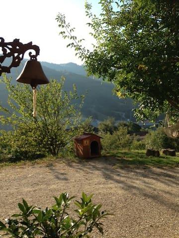 Bosco dei Cervi romantico B&B - Grizzana Morandi