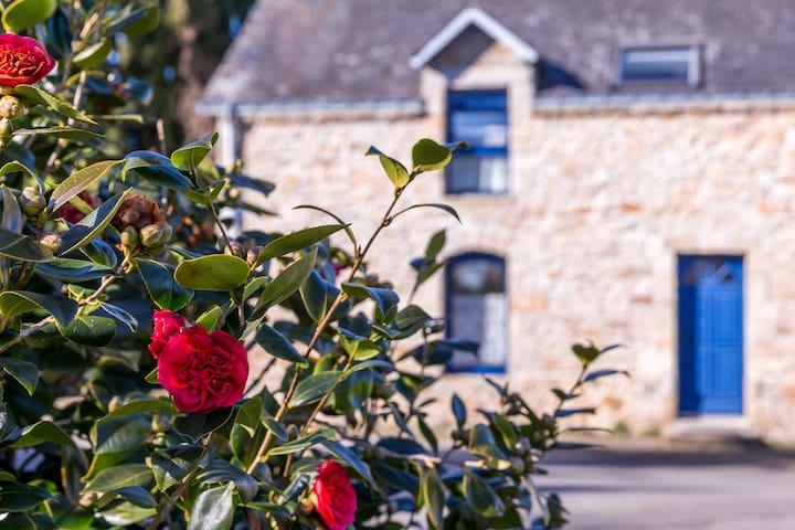 Near Carnac, beautiful house - Ploemel - Hus