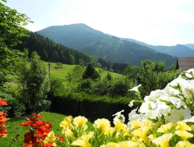 Ferienwohnung am Griesbach / Simonswald - Simonswald - Apartamento
