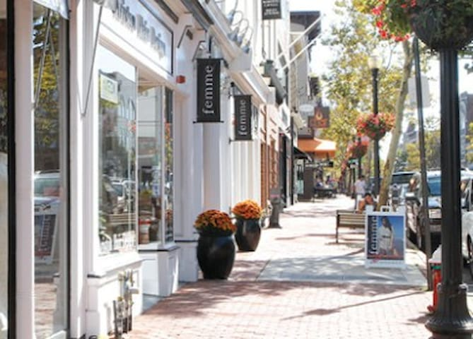 Red Bank ~ a cool little town at the Jersey Shore - Red Bank - Lägenhet