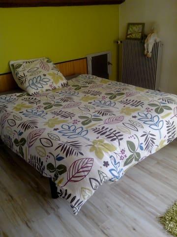 Grande chambre proche Bords du Loiret. - Olivet