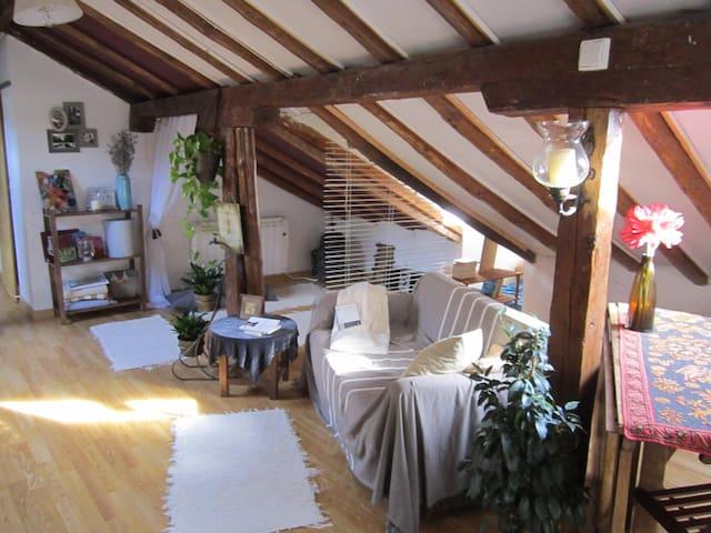 lovely and peaceful studio - San Lorenzo